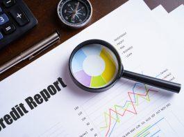 Credit Report Check