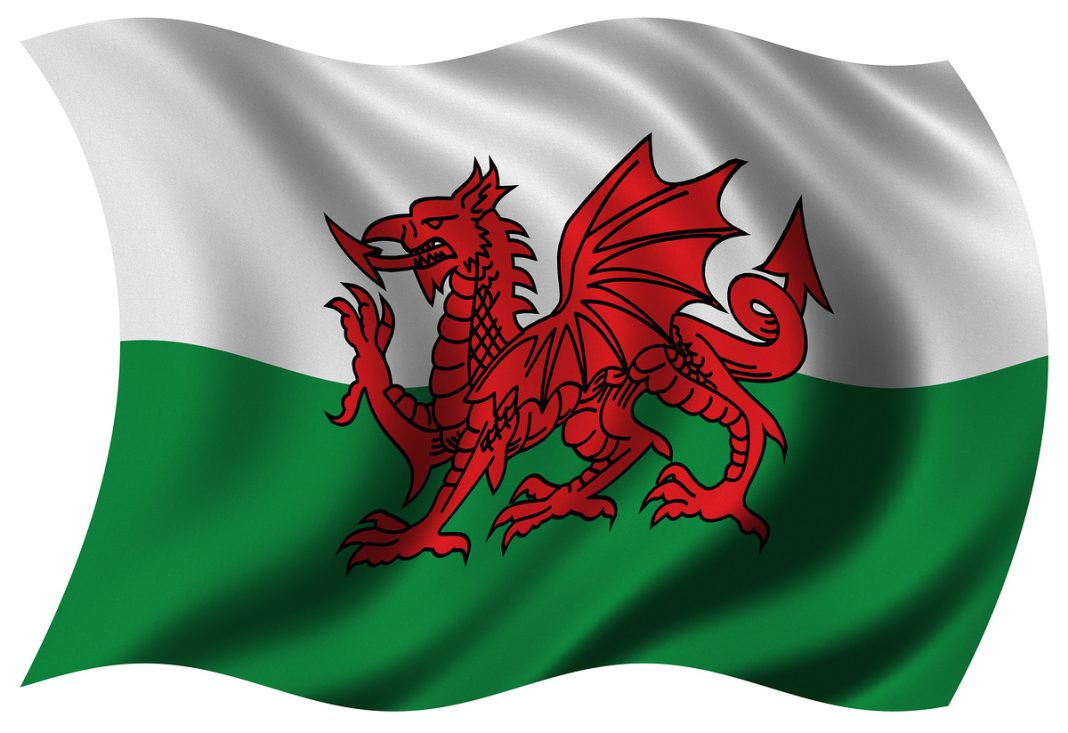 Welsh Flag Wales