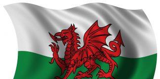 Welsh Flag Wales