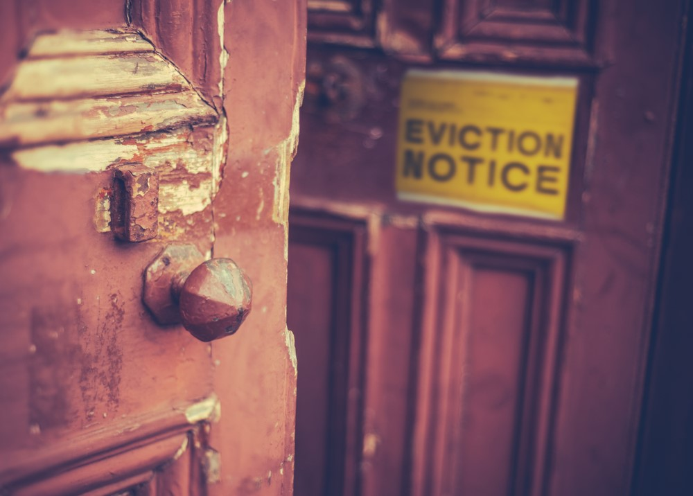 Landlord group plays down charity's fears of mass homelessness