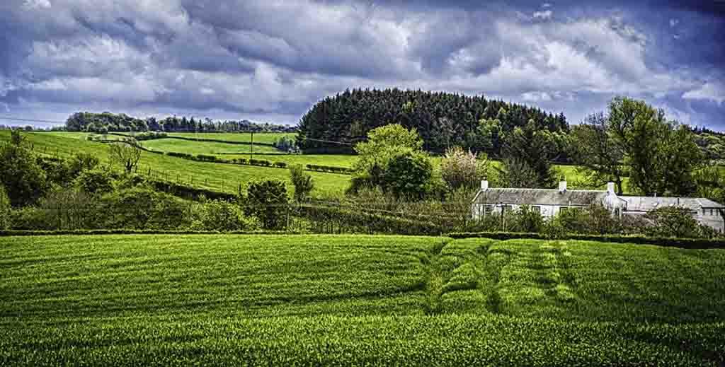 cannabis farm scotland